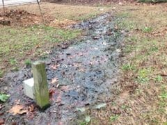 Septic Backing Up Repair